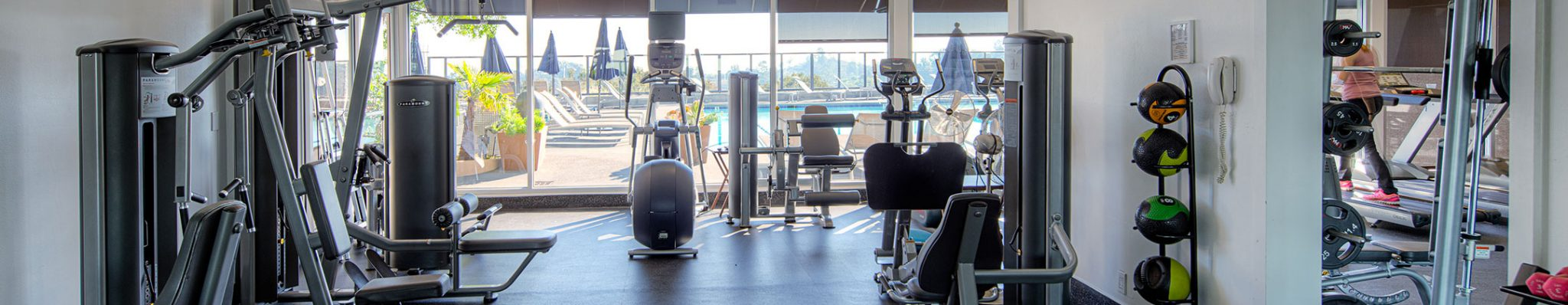 Passionate about Fitness? Try a New Gym Start Up