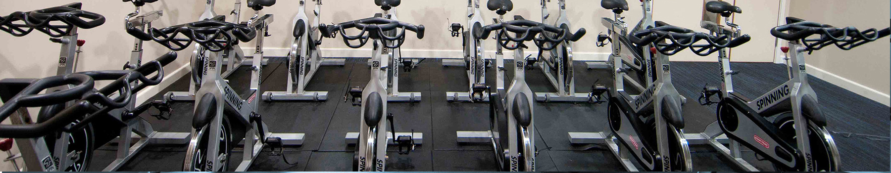 Fitness Center Consultants Are The Backbone Of Your Gym