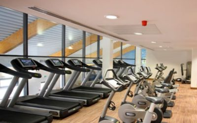 How a Business Consultant Can Help Your Fitness Center