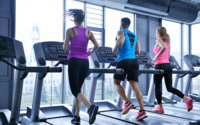 Marketing for Fitness: Create a Monthly Gym Member Spotlight